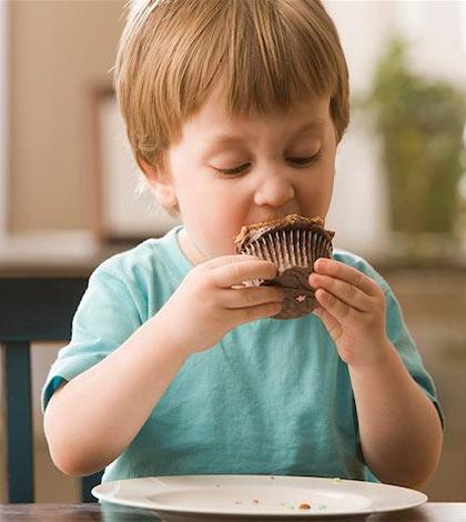 cupcakes_chocolate-01